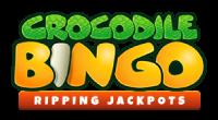 crocodile bingo review